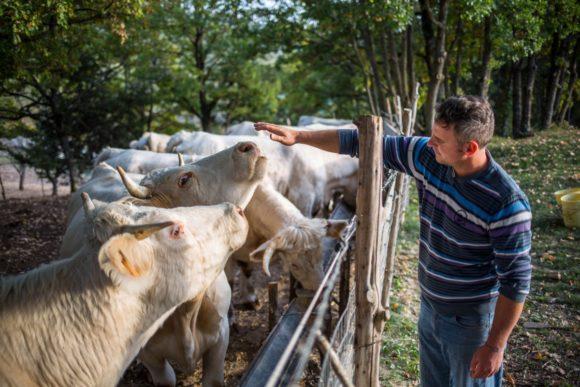 """Simone Vagni, con la sua azienda agricola biologica di Cascia è il nuovo beneficiario per l'Umbria della campagna """"Alleva la speranza"""""""