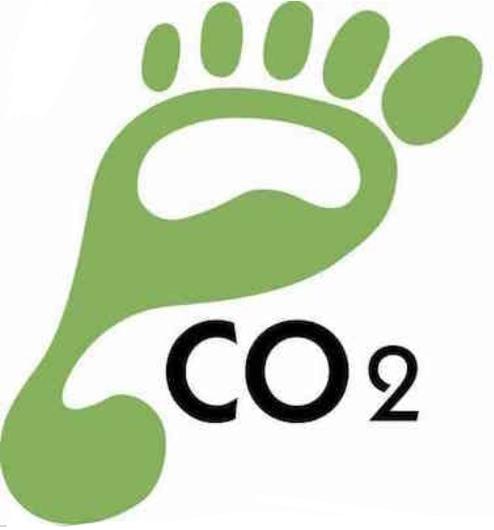 Web: procedure informatiche e impronta ecologica