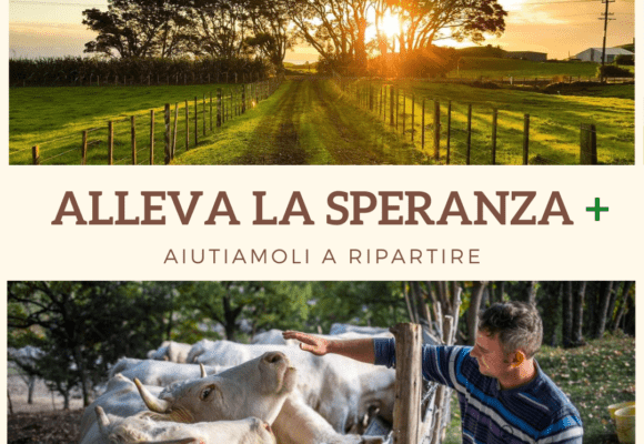 ALLEVA LA SPERANZA +