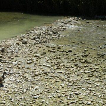 Mancanza del minimo vitale sul fiume Topino:  Legambiente Umbria presenta esposto