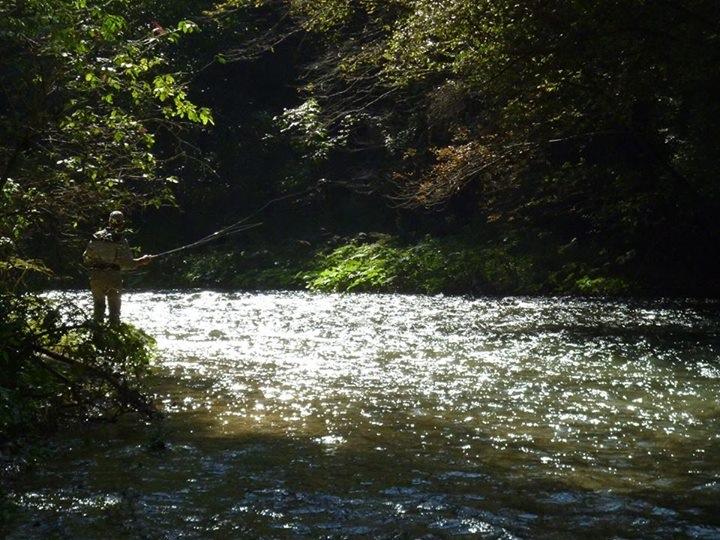 Nuova stagione di pesca: Legambiente risponde ad Arci Pesca, Cpa, Enalpesca, Fipsas e Libera Pesca.