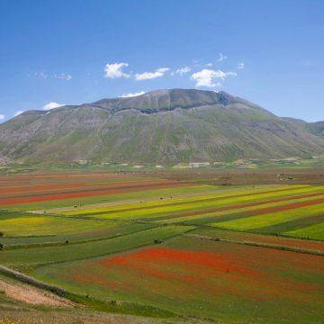 Fioritura di Castelluccio, al via la sperimentazione nei due week end di luglio verso una gestione sostenibile del Pian Grande